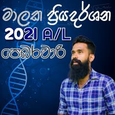2021 A/L February