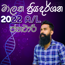 2022 A/L January