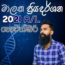 2021 A/L November